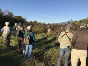 Field Trip Report – Sparrows at Old Trail